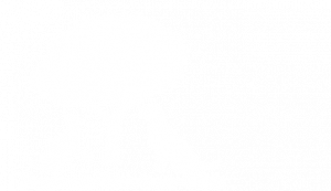 logo of kamloops veterinary clinic in kamloops british columbia