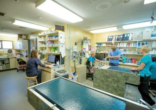 Kamloops - Treatment Area